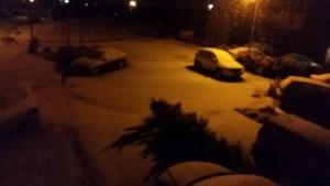 Noelle snow pic