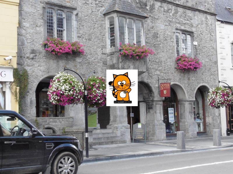 Rothe House, one of the winners at this year's Keep Kilkenny Beautiful awards.