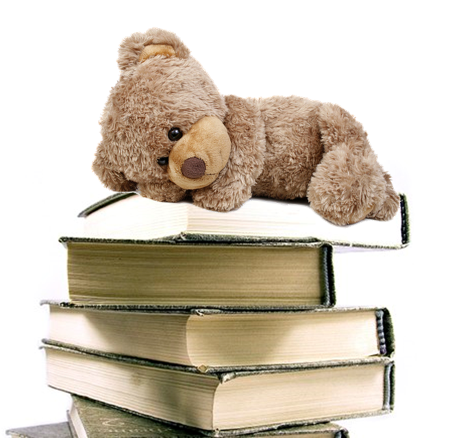 Image result for teddy bear library