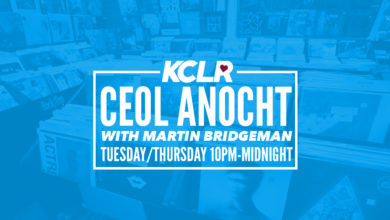Ceol Anocht with Martin Bridgeman