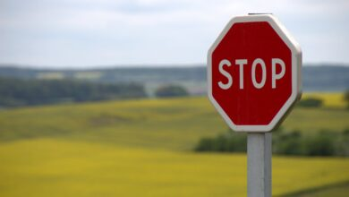 Stop sign / checkpoint