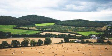 IMAGE pexels.com rural ireland