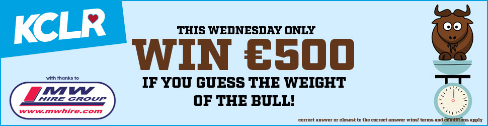 Guess the weight of the bull!
